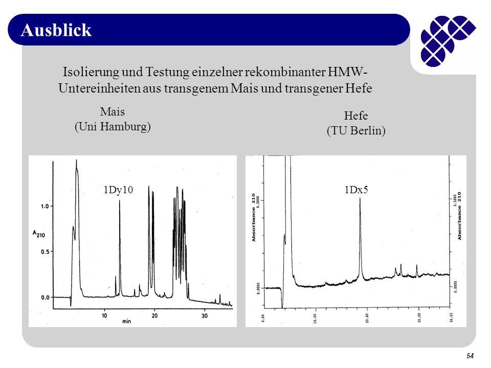 Ausblick Isolierung und Testung einzelner rekombinanter HMW-Untereinheiten aus transgenem Mais und transgener Hefe.