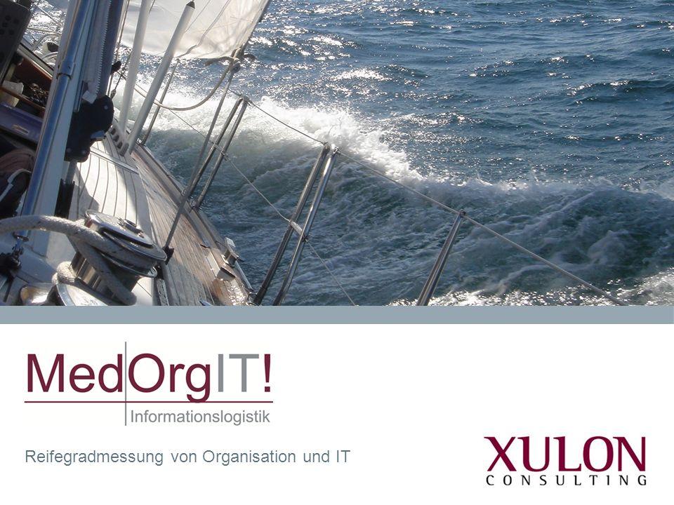 Reifegradmessung von Organisation und IT