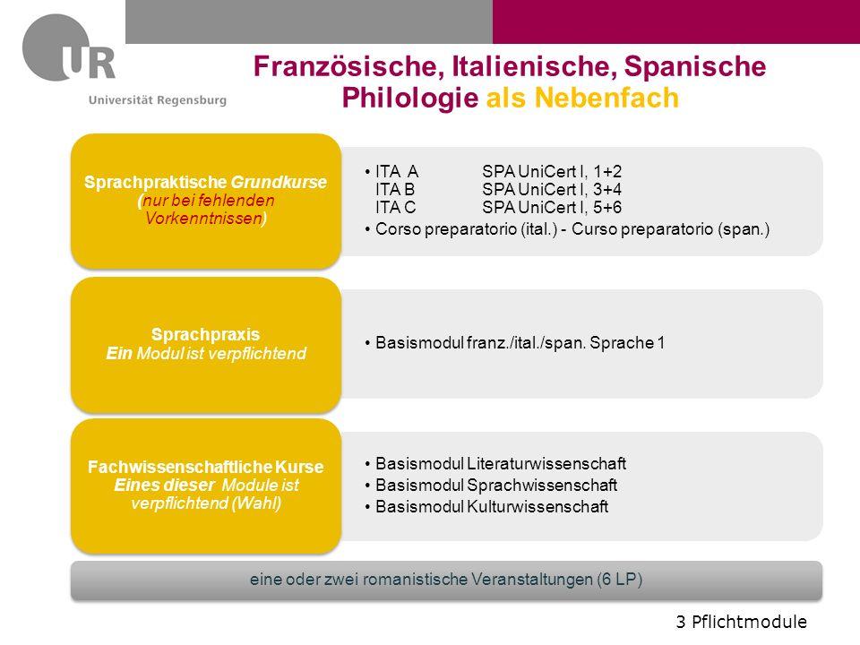 Französische, Italienische, Spanische Philologie als Nebenfach