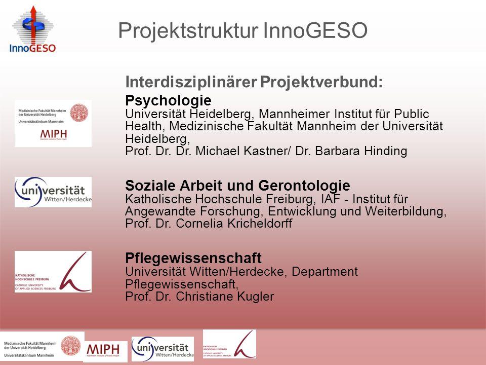 Projektstruktur InnoGESO