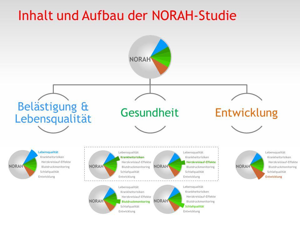 Inhalt und Aufbau der NORAH-Studie