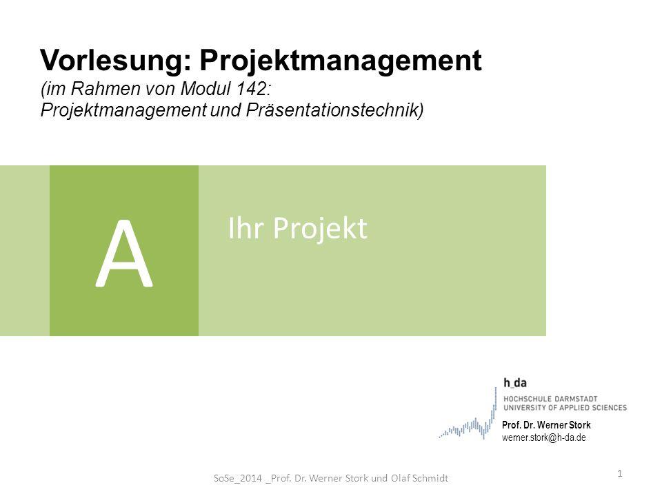 SoSe_2014 _Prof. Dr. Werner Stork und Olaf Schmidt