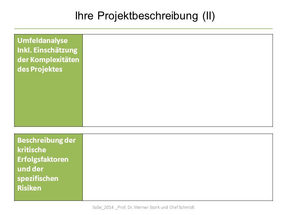 Ihre Projektbeschreibung (II)