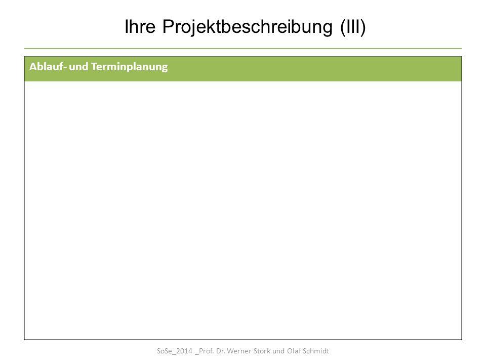 Ihre Projektbeschreibung (III)