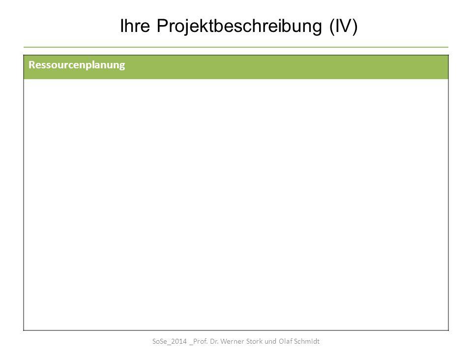 Ihre Projektbeschreibung (IV)
