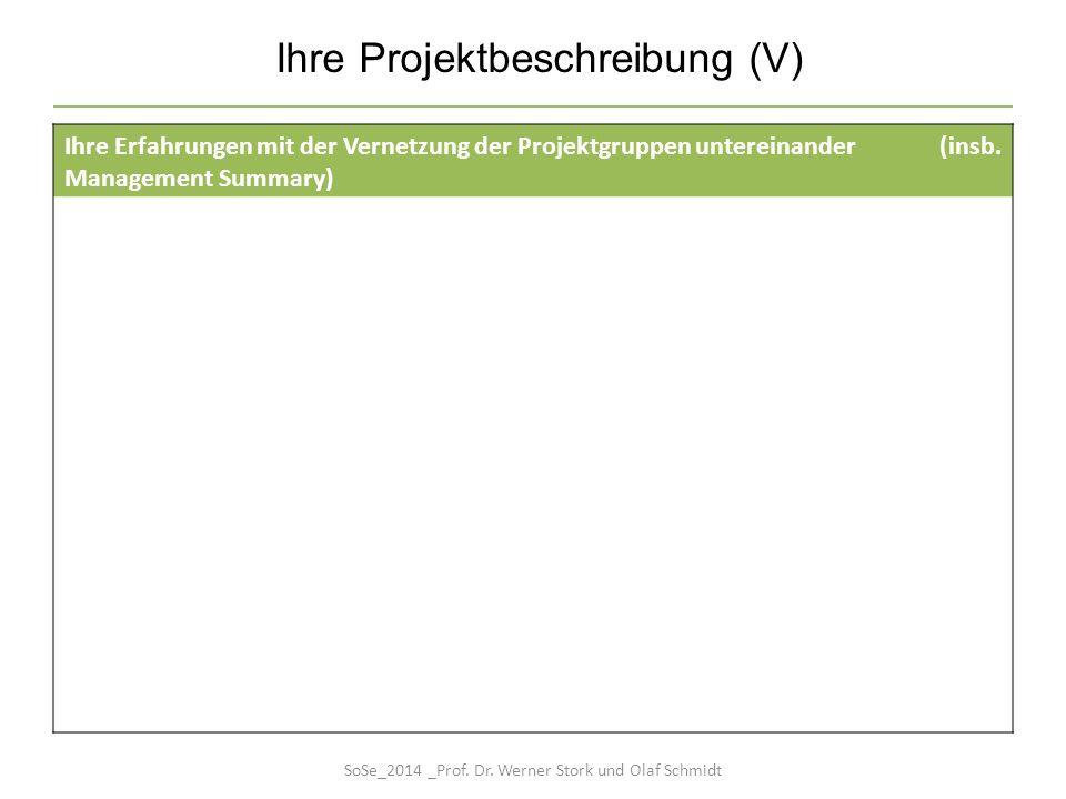 Ihre Projektbeschreibung (V)