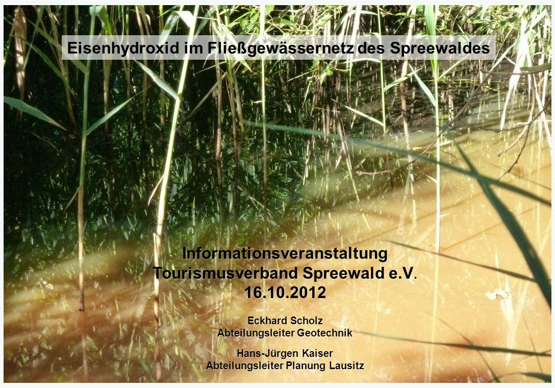 Verockerung des Fließgewässernetzes im Spreewald
