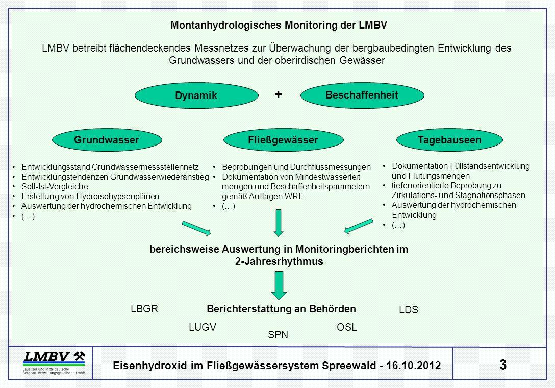 + Montanhydrologisches Monitoring der LMBV