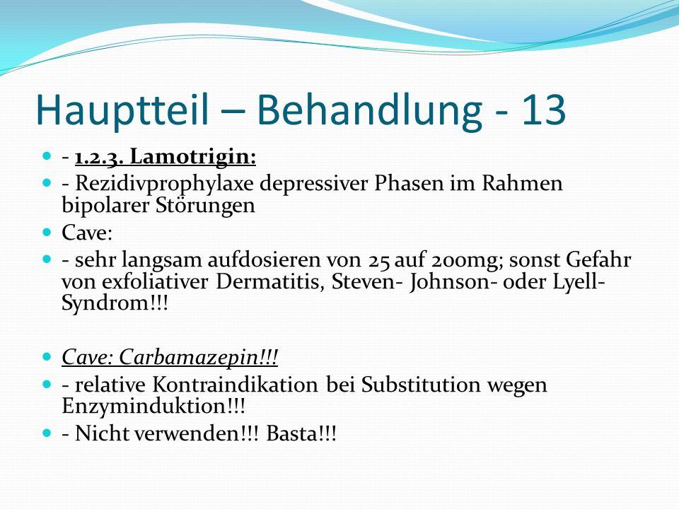 Hauptteil – Behandlung - 13