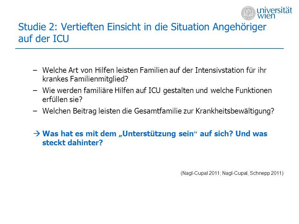 Studie 2: Vertieften Einsicht in die Situation Angehöriger auf der ICU