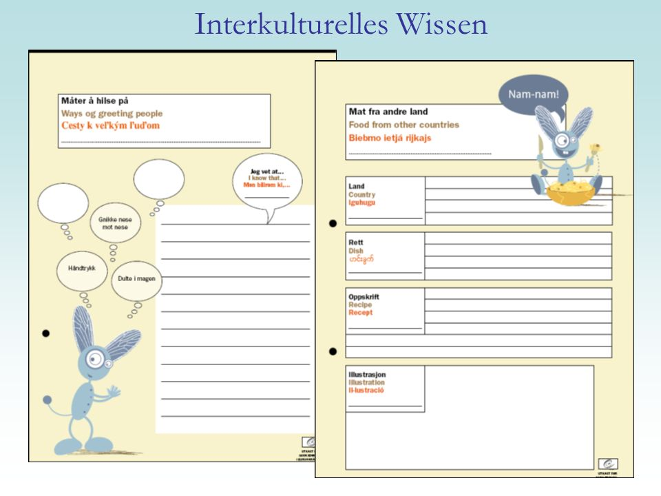 Interkulturelles Wissen
