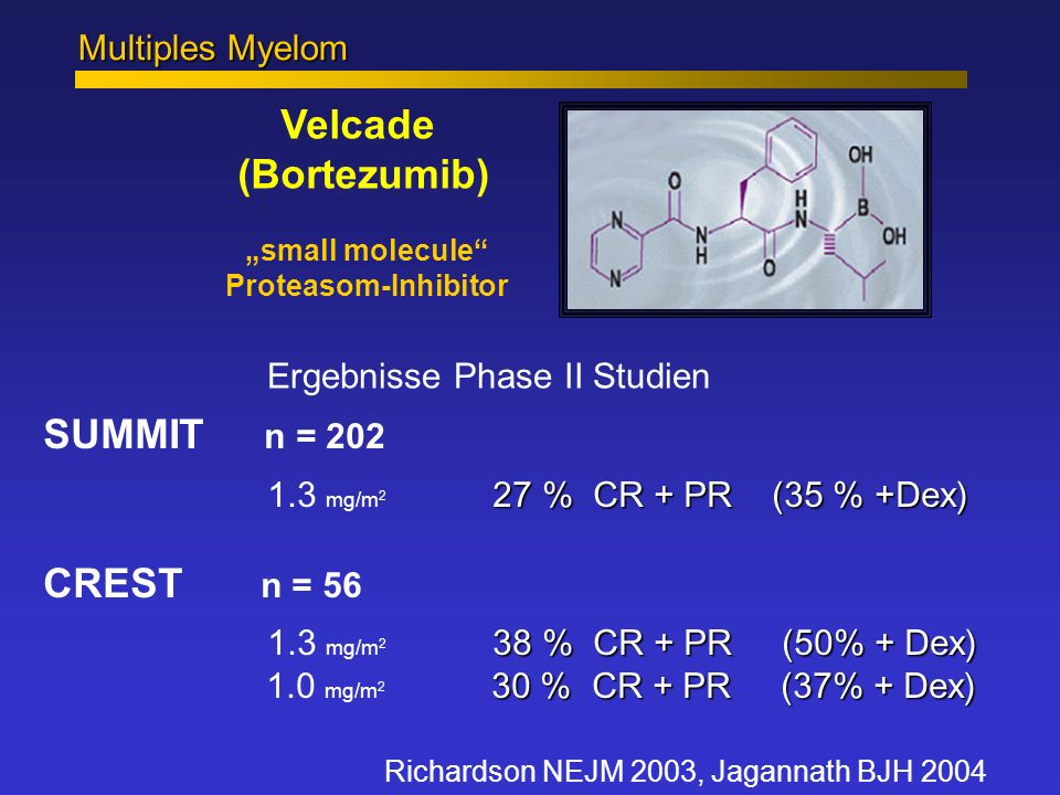 """Multiples Myelom Velcade (Bortezumib) """"small molecule Proteasom-Inhibitor. Ergebnisse Phase II Studien."""