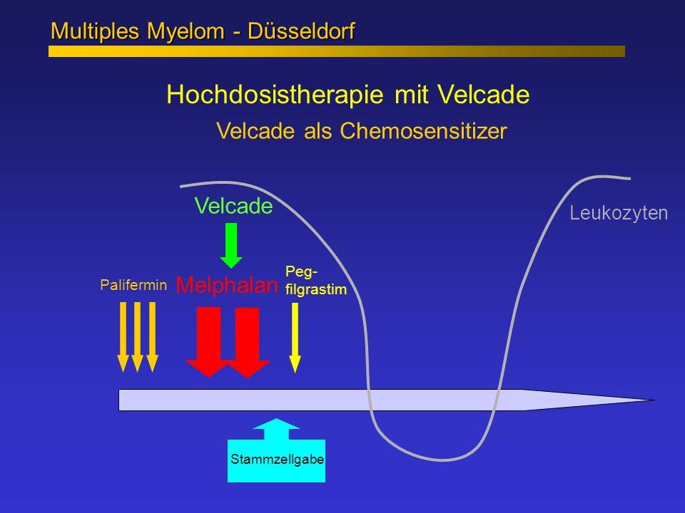 Hochdosistherapie mit Velcade