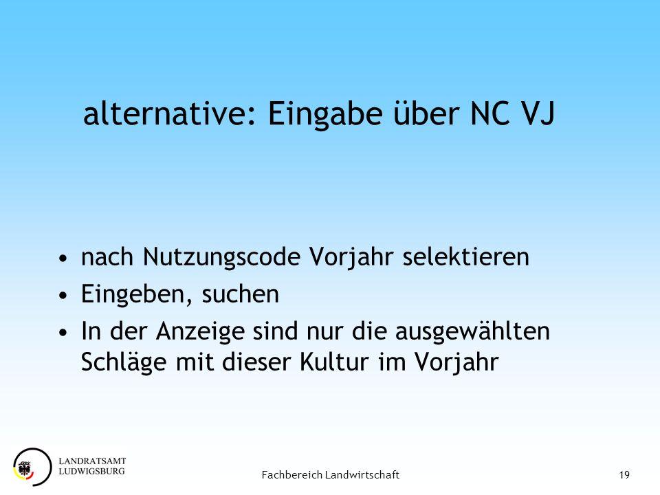 alternative: Eingabe über NC VJ