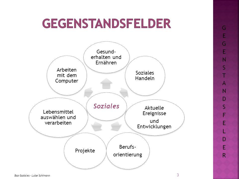 Gegenstandsfelder Soziales GEGENSTANDSFELDER