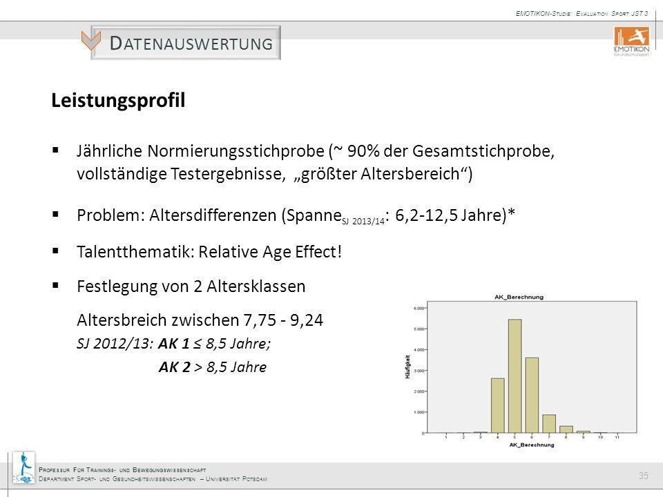 Datenauswertung Leistungsprofil