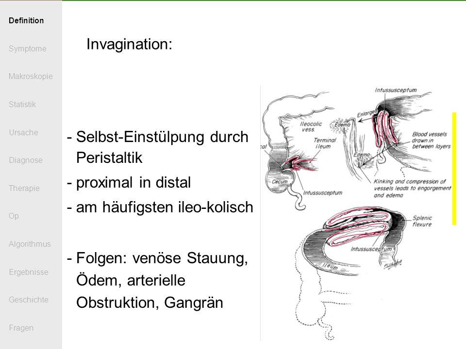 - Selbst-Einstülpung durch Peristaltik - proximal in distal