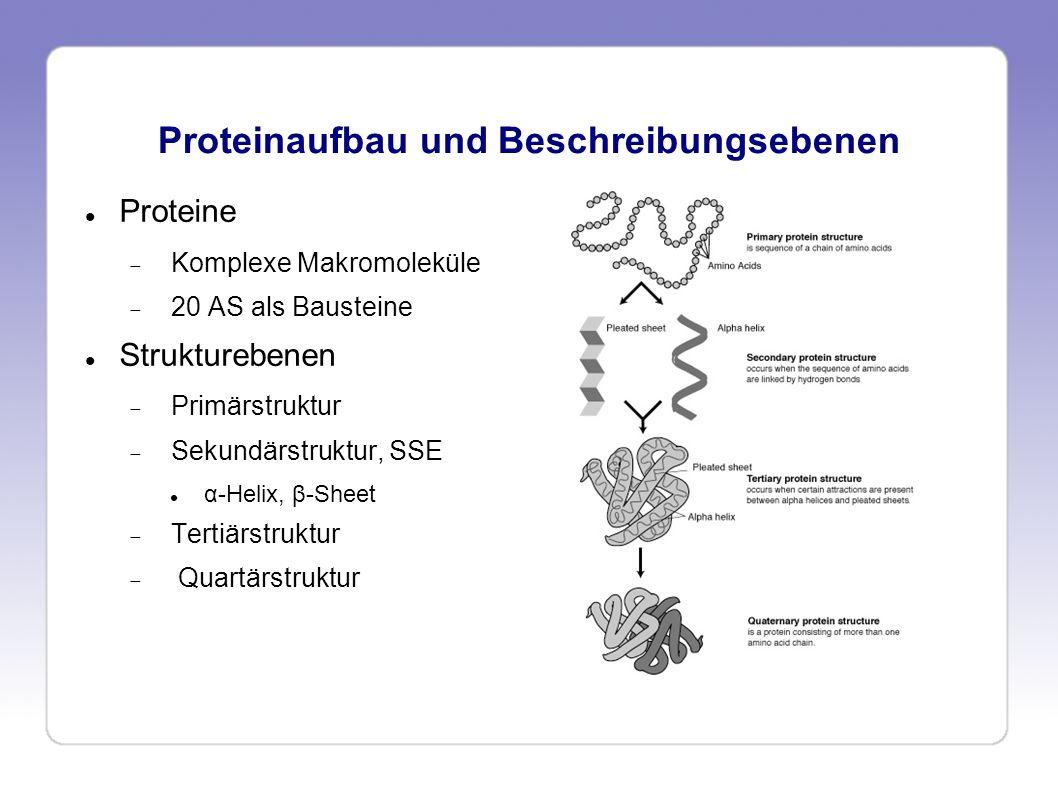 Proteinaufbau und Beschreibungsebenen