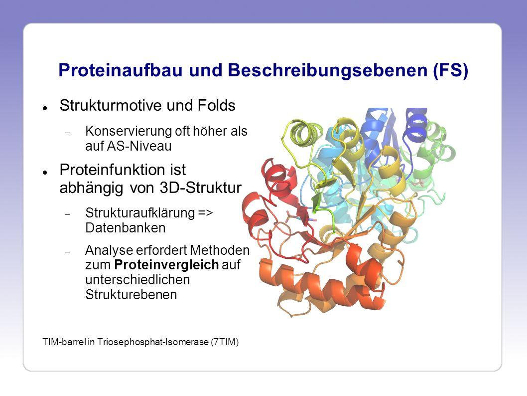 Proteinaufbau und Beschreibungsebenen (FS)