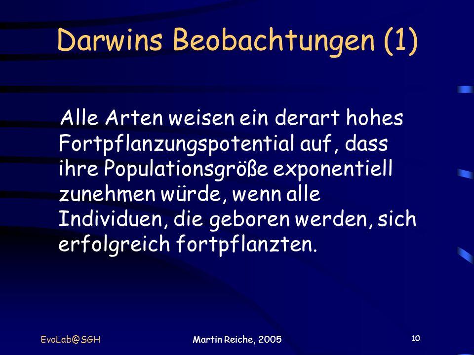 Darwins Beobachtungen (1)