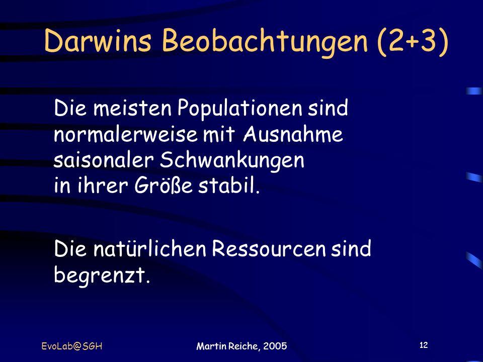 Darwins Beobachtungen (2+3)