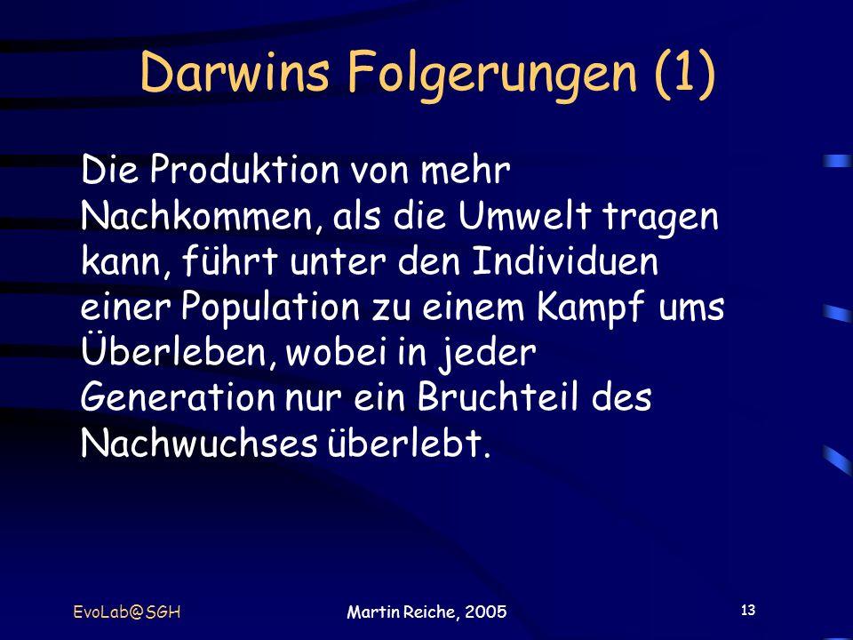 Darwins Folgerungen (1)