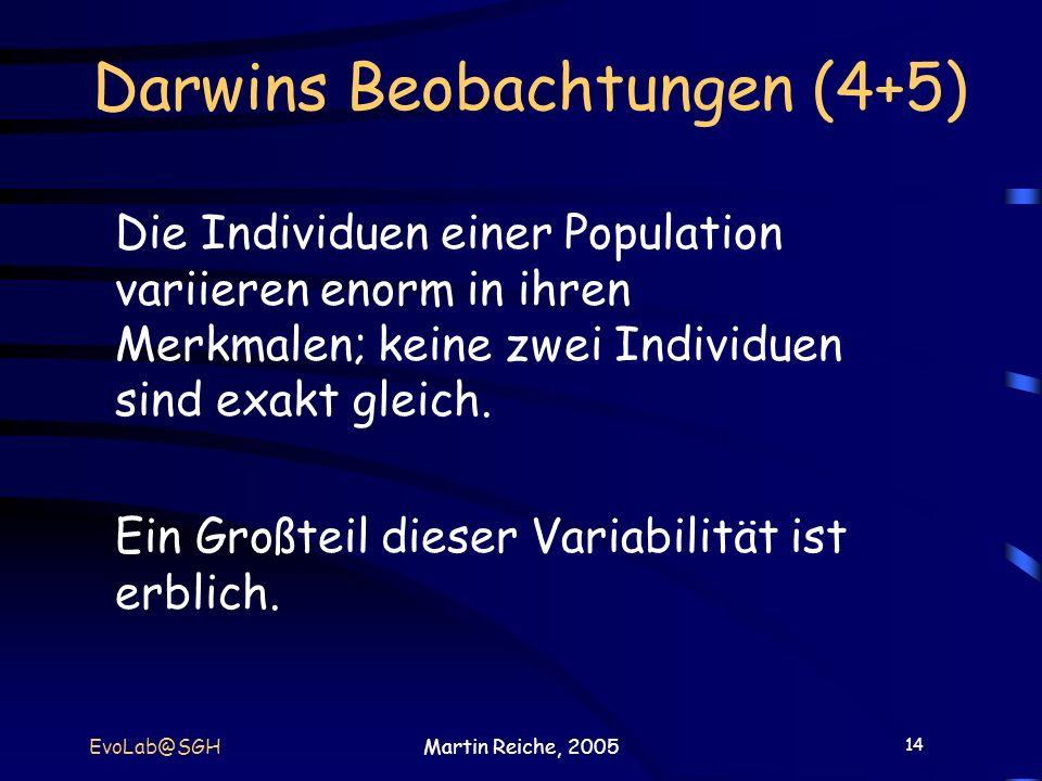 Darwins Beobachtungen (4+5)