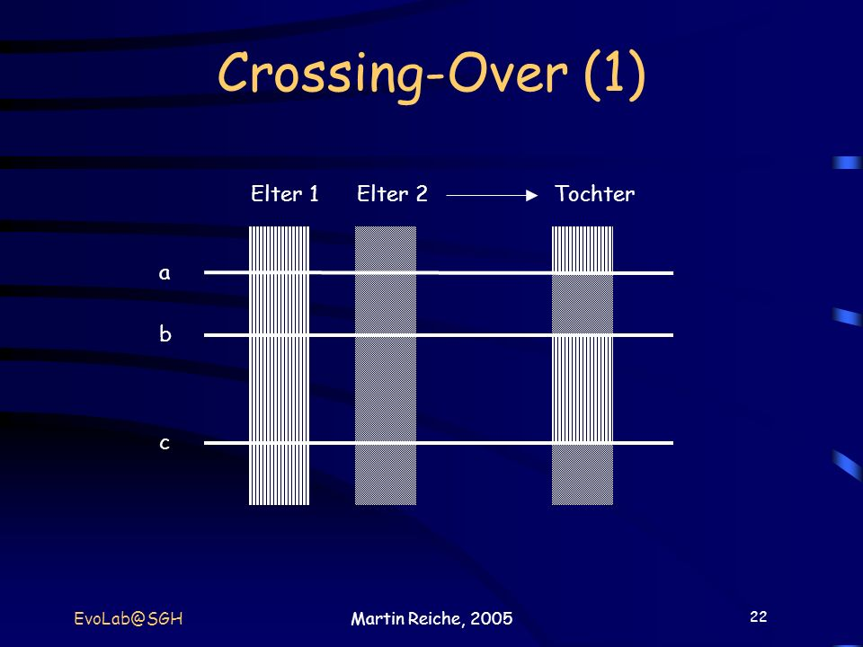 Crossing-Over (1) Elter 1 Elter 2 Tochter a b c EvoLab@SGH