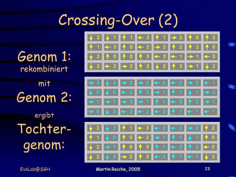 Genom 1: rekombiniert mit Genom 2: ergibt Tochter-genom: