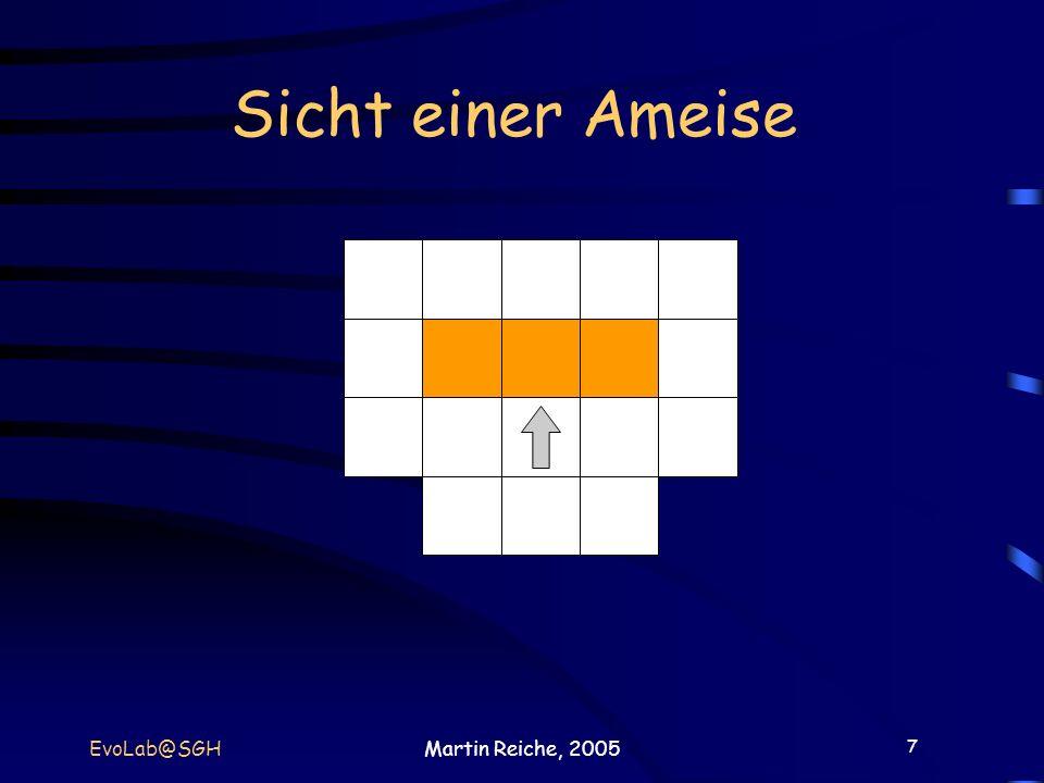 Sicht einer Ameise EvoLab@SGH Martin Reiche, 2005