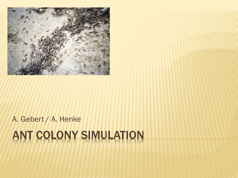 A. Gebert / A. Henke Ant colony simulation