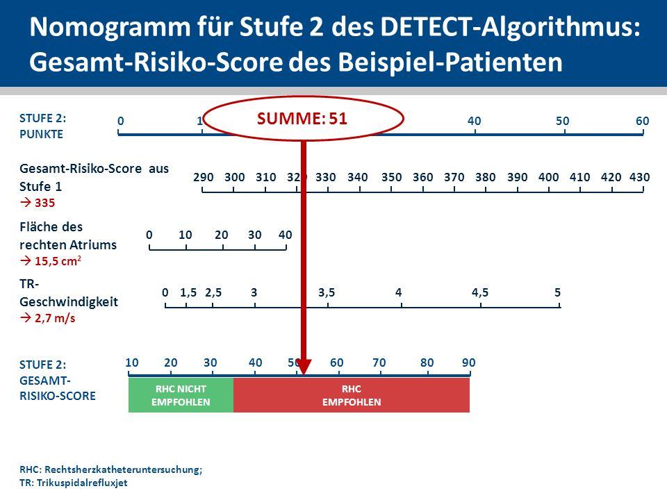 Nomogramm für Stufe 2 des DETECT-Algorithmus: Gesamt-Risiko-Score des Beispiel-Patienten