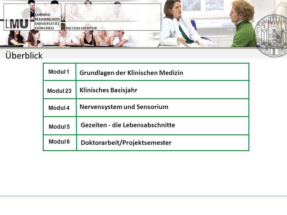 Überblick Grundlagen der Klinischen Medizin Klinisches Basisjahr