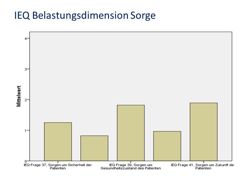 IEQ Belastungsdimension Sorge