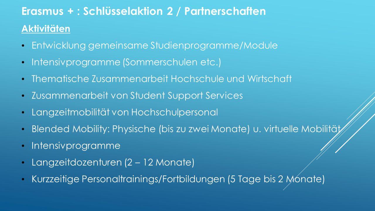 Erasmus + : Schlüsselaktion 2 / Partnerschaften
