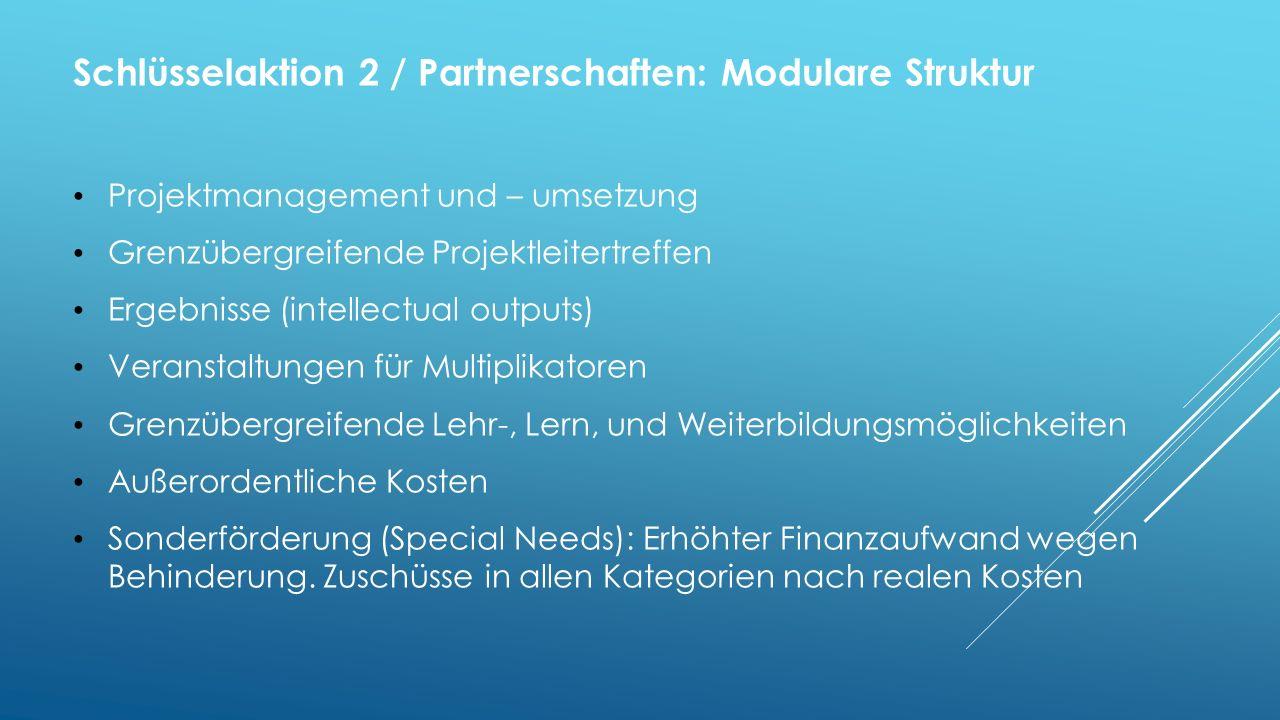 Schlüsselaktion 2 / Partnerschaften: Modulare Struktur