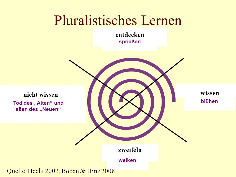 Pluralistisches Lernen