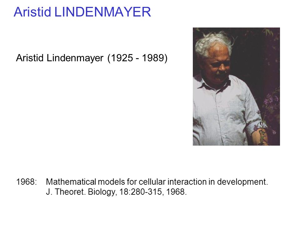Aristid LINDENMAYER Aristid Lindenmayer ( )