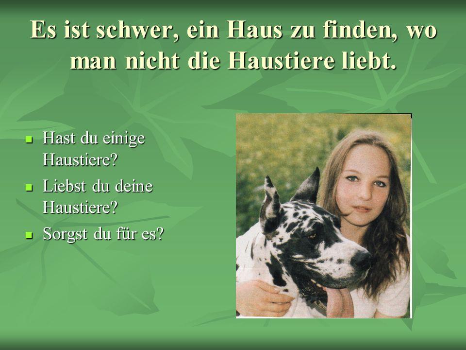 Es ist schwer, ein Haus zu finden, wo man nicht die Haustiere liebt.
