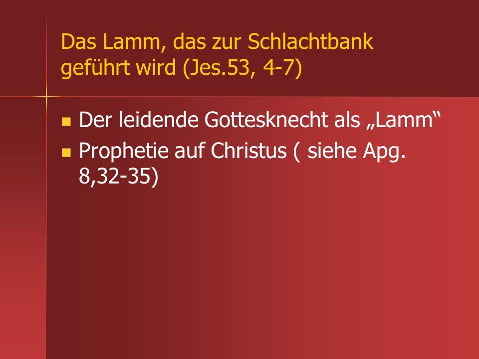 Das Lamm, das zur Schlachtbank geführt wird (Jes.53, 4-7)