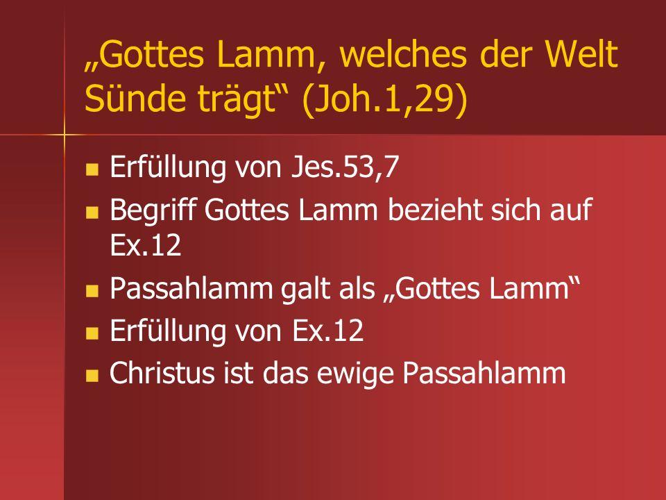 """""""Gottes Lamm, welches der Welt Sünde trägt (Joh.1,29)"""