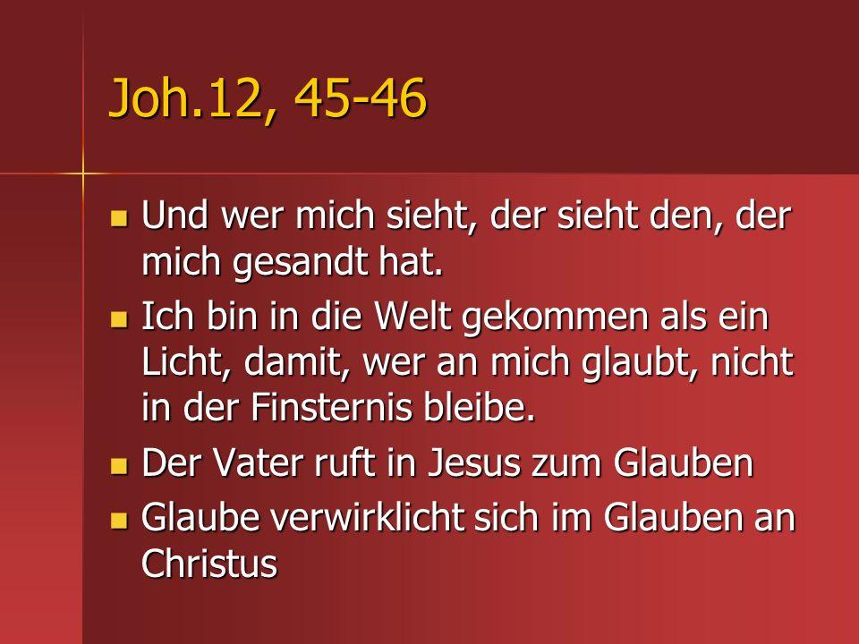 Joh.12, 45-46 Und wer mich sieht, der sieht den, der mich gesandt hat.