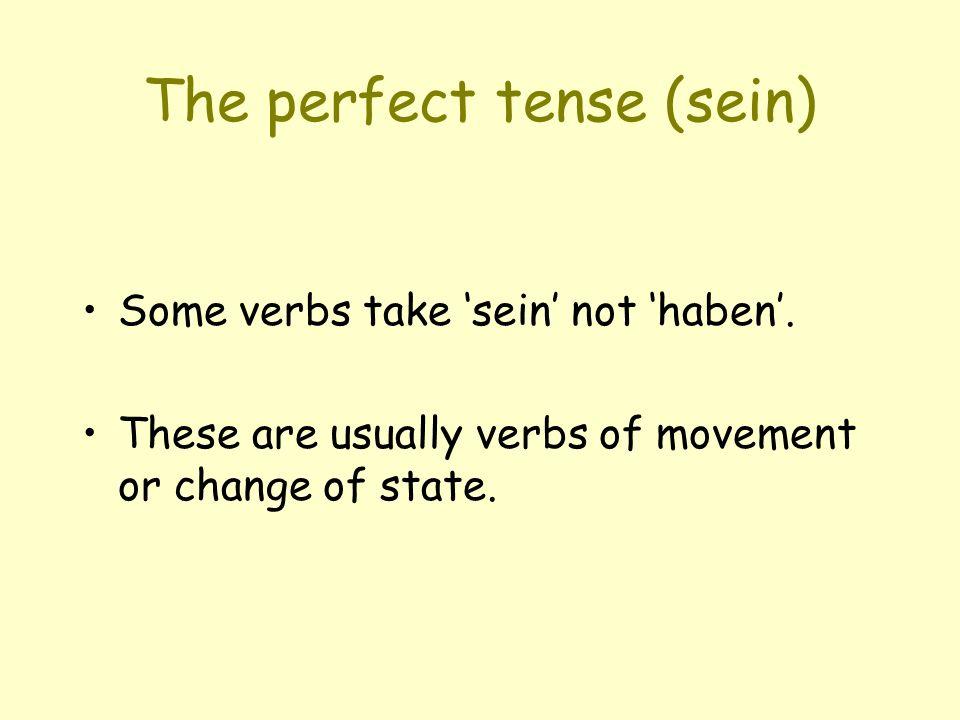 The perfect tense (sein)