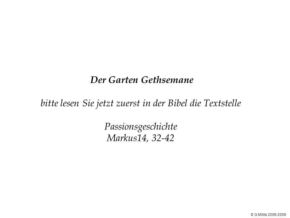 Der Garten Gethsemane bitte lesen Sie jetzt zuerst in der Bibel die Textstelle Passionsgeschichte Markus14, 32-42