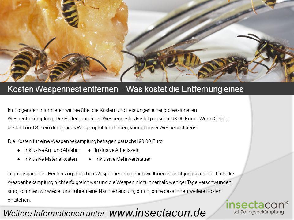 Weitere Informationen unter: www.insectacon.de