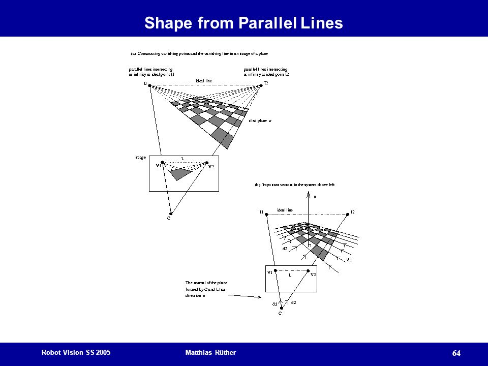 Shape from Parallel Lines