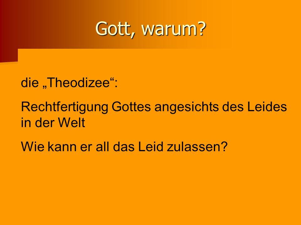 """Gott, warum die """"Theodizee :"""