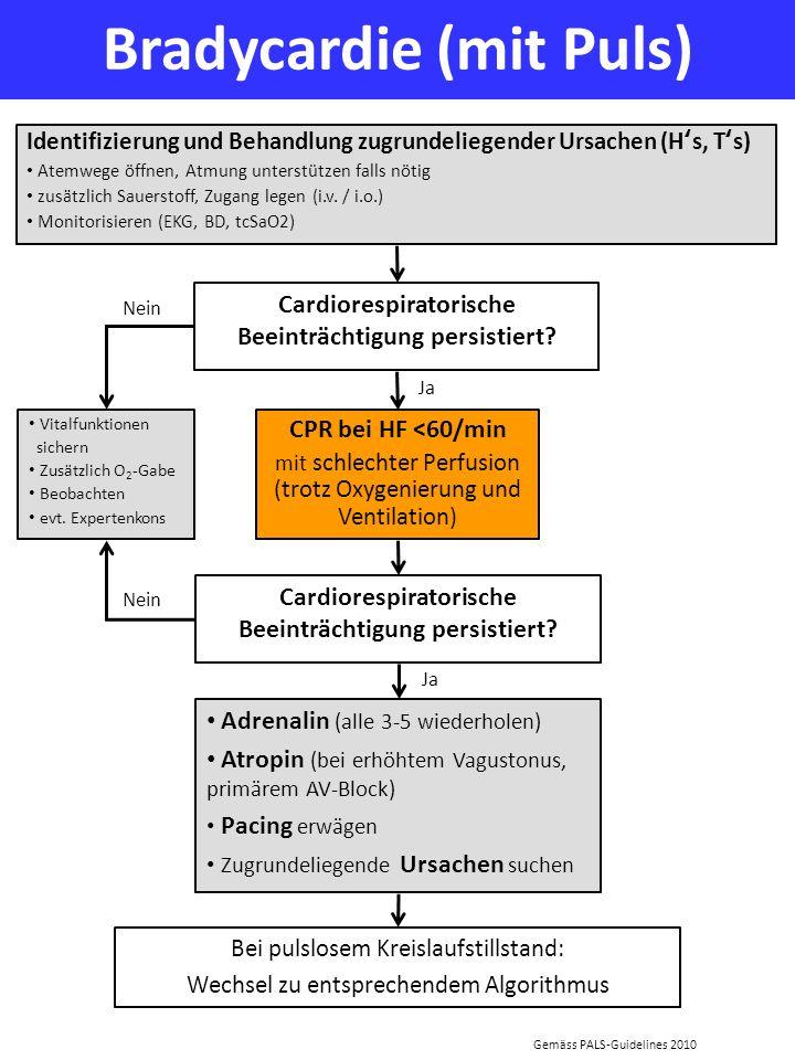 Bradycardie (mit Puls)