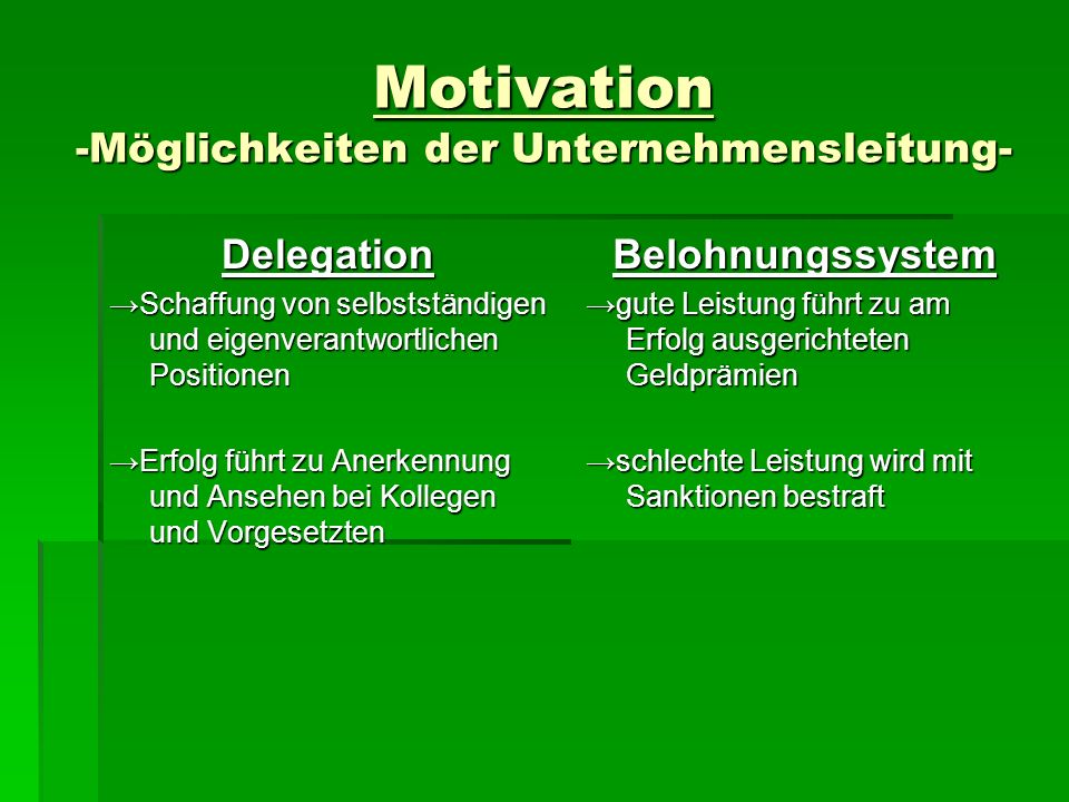 Motivation -Möglichkeiten der Unternehmensleitung-