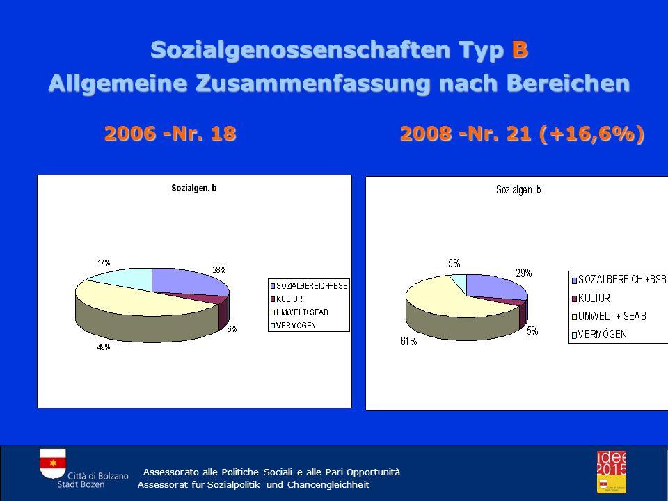 Sozialgenossenschaften Typ B Allgemeine Zusammenfassung nach Bereichen